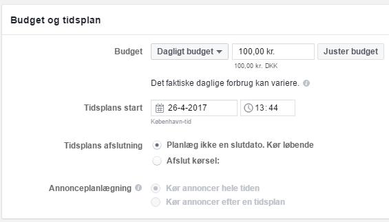 Saet budget for annoncesæt til en Facebook kampagne